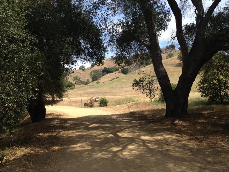 Hiking in Malibu Canyon